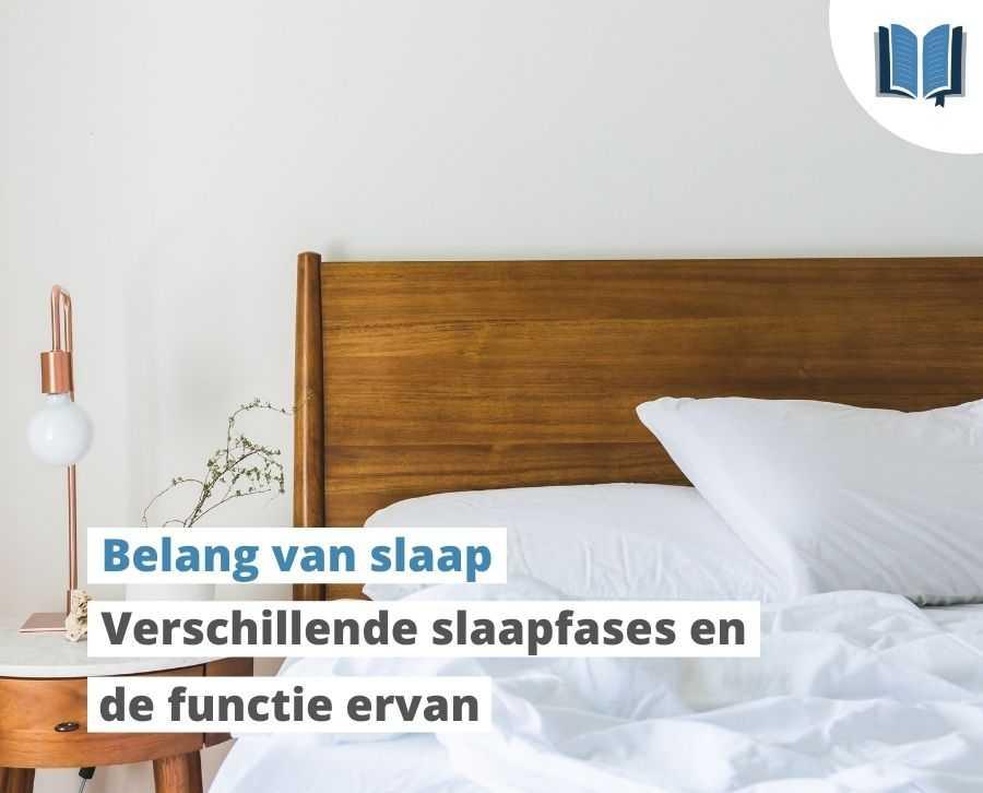 Slaapfases