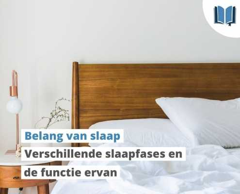 belang van slaap